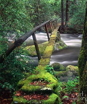 Smoky Mountain Foot Bridge 2009 by Matthew Turlington