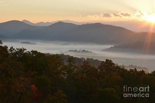 Patricia Twardzik - Smoky Mountain Morning