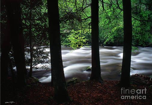 Smoky Mountain Stream #2  2009 by Matthew Turlington