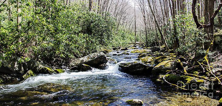 Paul Mashburn - Smoky Mountain Water