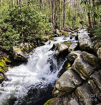 Paul Mashburn - Smoky Mountain Waterfall