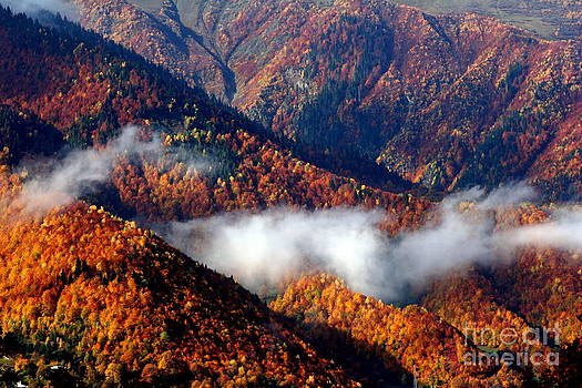 Smoky Mountains by Arie Arik Chen