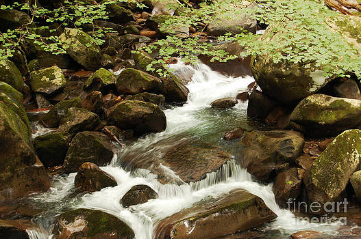 Smoky Mountains water flowing over rocks by Susan Montgomery