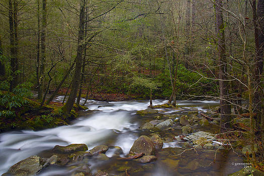 Smoky Mountains White Water by Greg Weseman