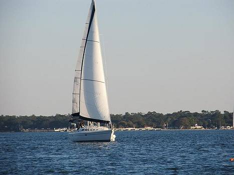 Smooth Sailing Carolina by Joetta Beauford