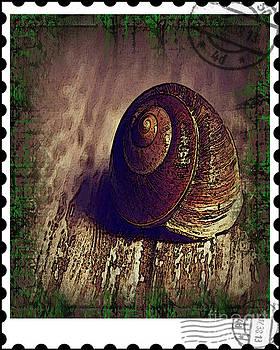 Snail Mail by Don Melton