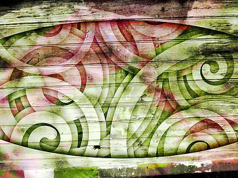 Snail Spirit by Florin Birjoveanu