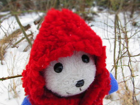 Snebamse in snow by Chepcher Jones