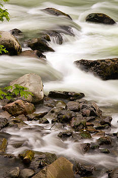 Snoqualmie River Washington by Bob Noble