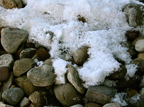 Sandy Tolman - Snow 01-03-14 --8144 Ocean Snow