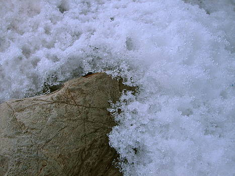 Sandy Tolman - Snow 01-03-14 -- 8151 Ocean Snow