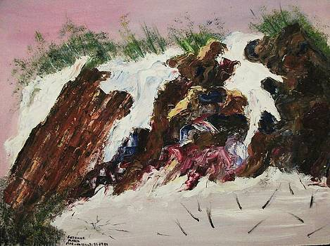 Suzanne  Marie Leclair - Snow and Rocks