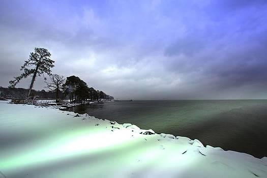 Regina  Williams  - Snow and Sand Unite