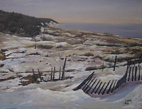 Snow at Jones Beach by Victor SOTO