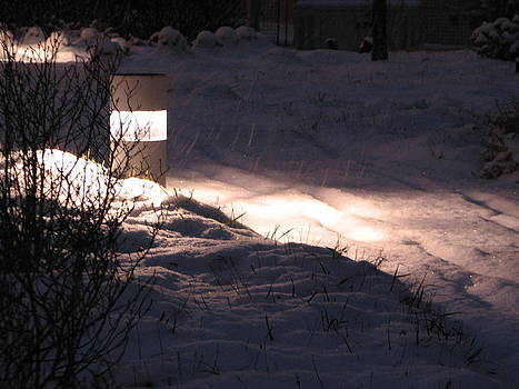 Sandy Tolman - Snow at Night - Pathway Light 0294