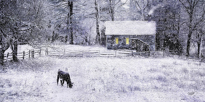 Snow At Sturbridge Village by Michael Petrizzo