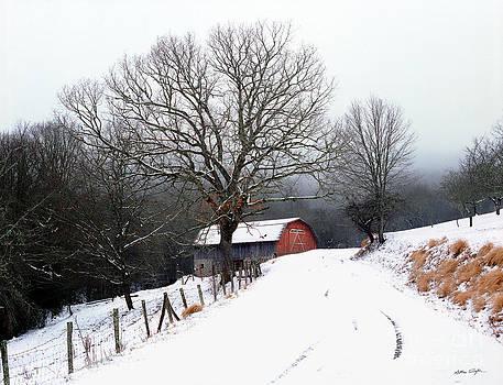 Snow Barn Red Door 2007 by Matthew Turlington