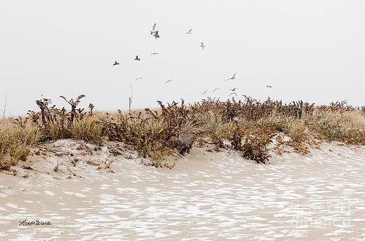 Michelle Constantine - Snow Birds
