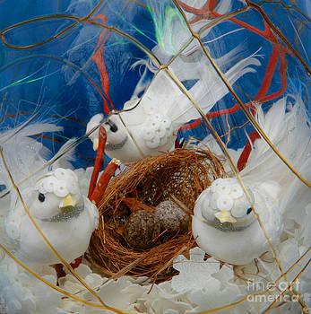 Snow Birds Nesting by Jennifer Reitmeyer