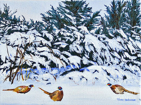 Snow Birds by Terry Anderson