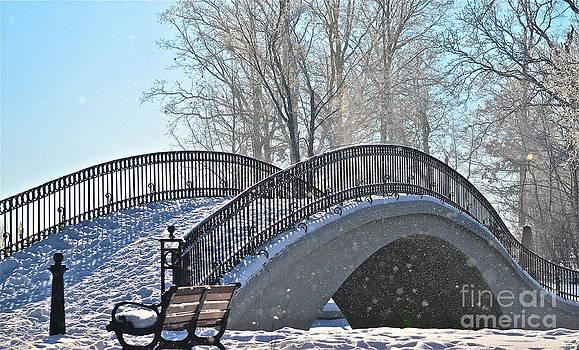 Snow Bridge by Jason Layden