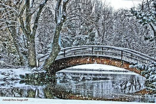 Snow Bridge by Rebecca Adams