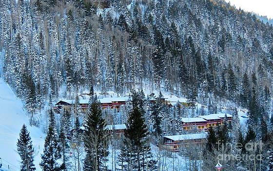 LeLa Becker - Snow cabins