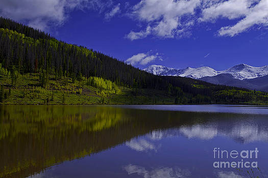 Snow Capped Reflection by Barbara Schultheis