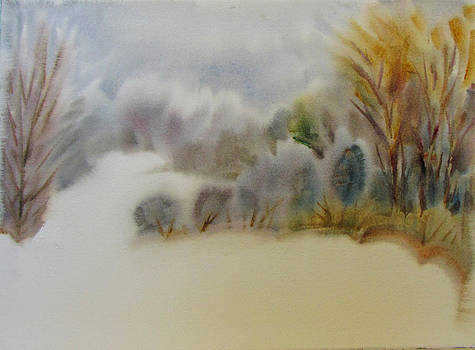 Snow Covered Meadow by Pat Percy