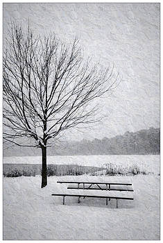 Snow Covered Picnic Table by Crystal Wightman