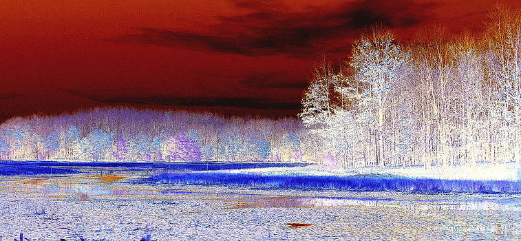Rosemarie E Seppala - Snow Covered Sunset   Abstract