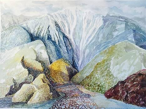 Snow Creek Palm Springs by Vaughan Davies