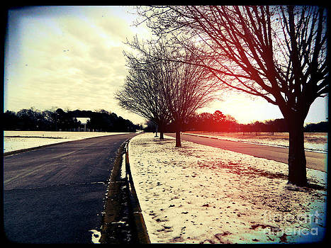 Snow Day in Texas by Jose Benavides