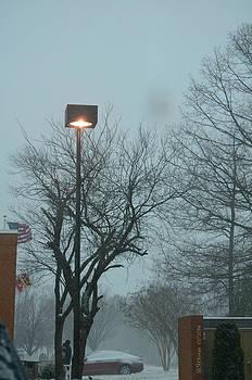 Snow Day In Waldorf by Sheila Noren