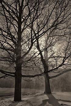 Snow Drifting 2014 by Joseph Duba