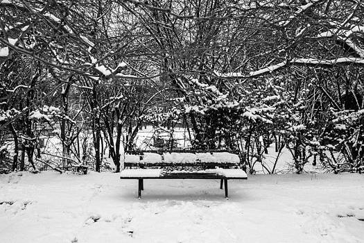 Snow during the winter in Paris by Gianfranco Evangelista