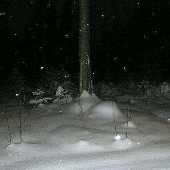 Eve Tamminen - Snow