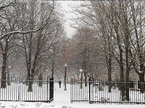 Alfred Ng - snow falling on Grange park