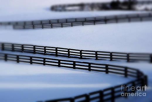 Andrea Kollo - Snow Fence