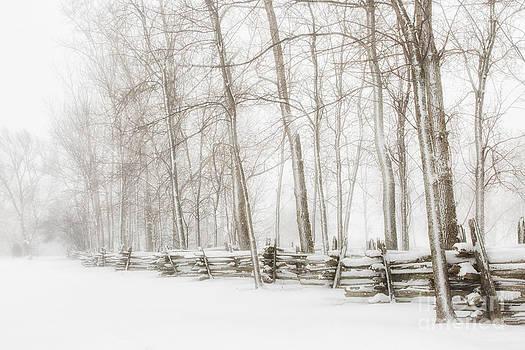 Snow Fence by doug hagadorn by Doug Hagadorn