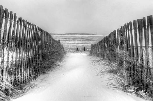 William Reek - Snow Fence in Black and White