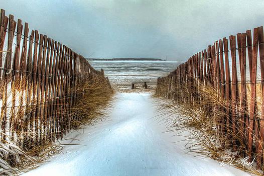 William Reek - Snow Fence