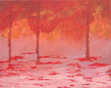 Snow Fire by Brandy Gerber