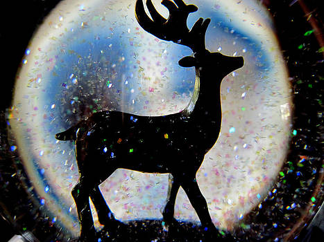 Gilbert Photography And Art - Snow Globe