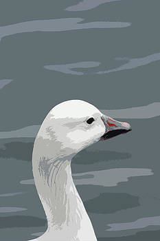 Snow Goose Portrait by Bob and Jan Shriner