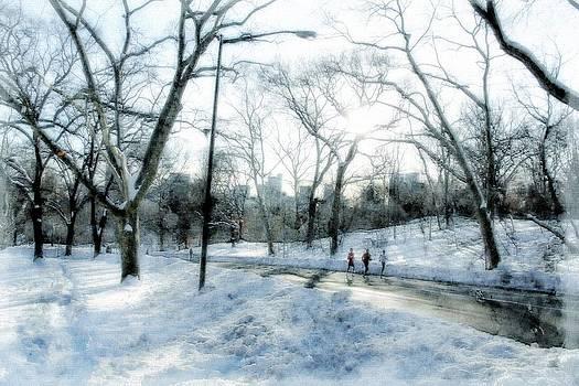 Snow in Central Park by Esther Branderhorst