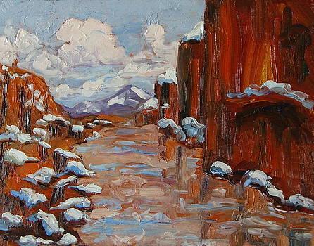 Snow In The Colorado River Canyon Moab Utah by Zanobia Shalks