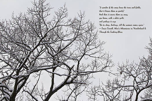 Mother Nature - Snow In The Woods - Lewis Carroll Quotation