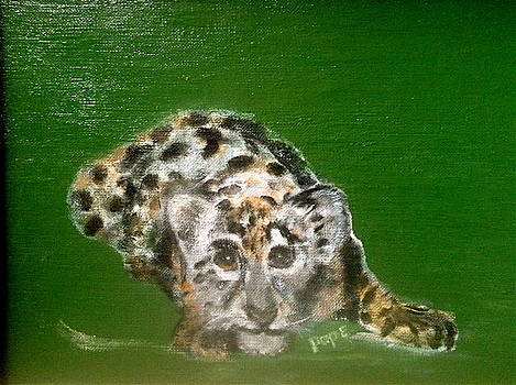 Snow Leopard by Bruce Ben Pope