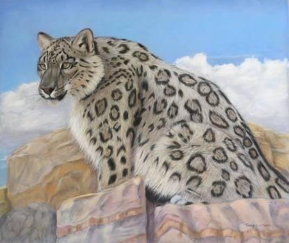 Snow leopard by Teresa LeClerc